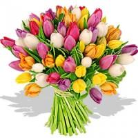 Тюльпаны срезка к 8 марта 2021г